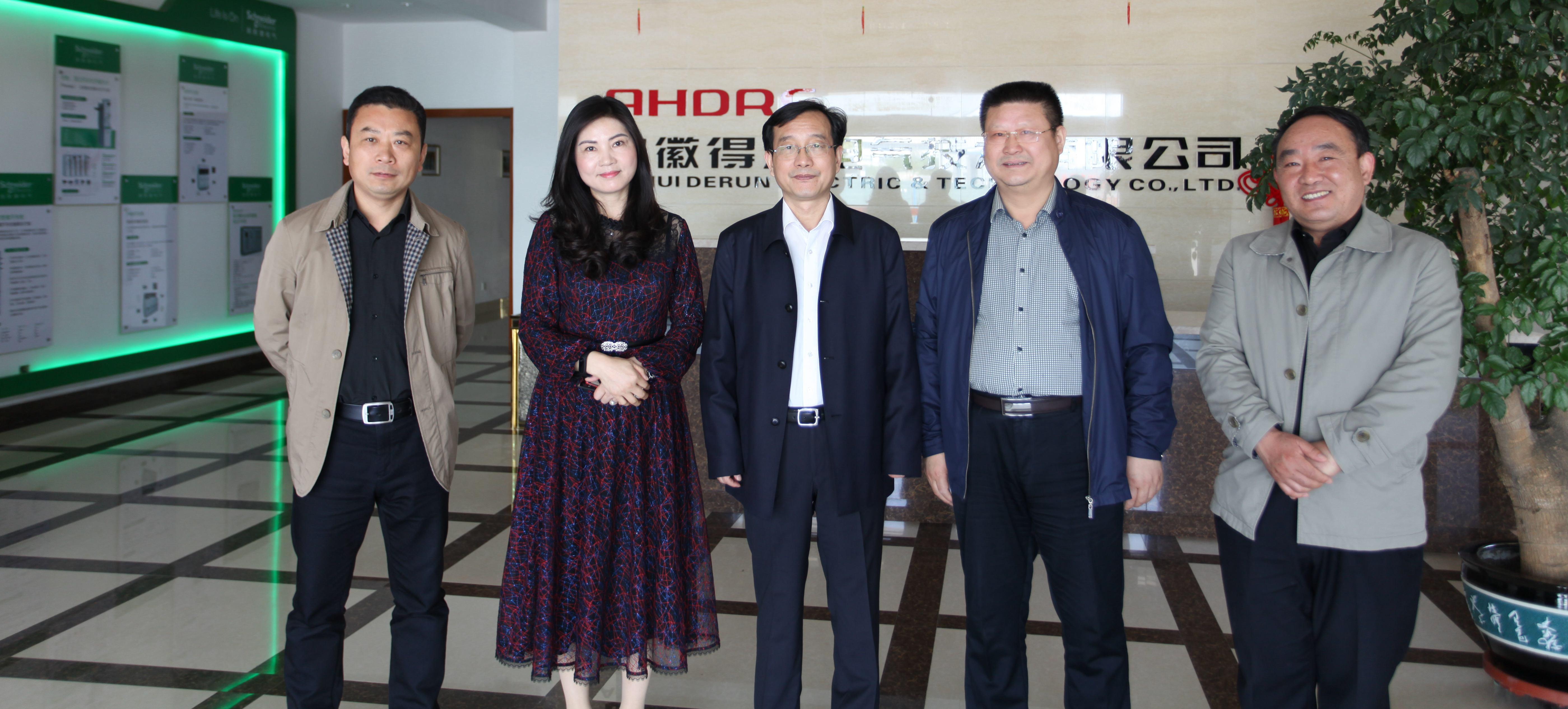 热烈欢迎长丰县委书记许华一行莅临得润电气走访调研